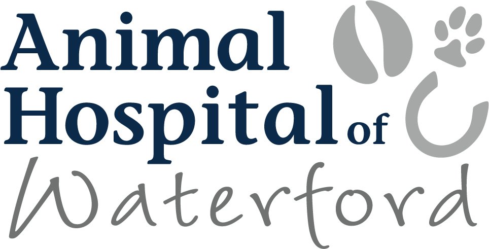 Animal Hospital of Waterford Logo